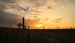 Droneflight / First Shootingday of META ( Aerial Shoots ) #shortfilm #drone #dji #inspire #shooting #aerial #sunrise #morning #day #epic #shots #meta #series #flight #fly #high (svenottinger) Tags: morning sunrise fly high day shots meta flight aerial series shooting inspire epic shortfilm drone dji