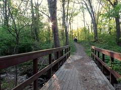 IMG_4353 (mohandep) Tags: flowers trees plants nature scenery walk wildlife families birding stlouis forestpark