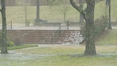 DAVE8504 (David J. Thomas) Tags: storm water rain lab arkansas biology microbiology thunder precipitation batesville lyoncollege