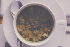 [ B R   K ] (galwachs) Tags: flowers flores flower cup relax tea flor rest pause taza chai descanso t pausa