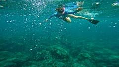 Bubbles (minimi007) Tags: sea summer woman green water sunshine outdoors hawaii us day underwater diving maui scubadiving lanai watersport gopro goprohero kesa snorkeln gopro4 gopro4black