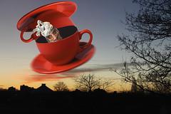 113/366 Die Fliegende Untertasse von Doktor Helga (ruthlesscrab) Tags: self weird flying space flight ufo planetarium helga wah tinfoil ovni hereios werehere 366the2016edition 3662016 22apr16 day113366 flyingsaucer filegendeuntertasse