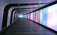 In St Pancras station (arripay) Tags: london colors station train subway colours corridor railway tunnel lumiere kingscross passage stpancras passageway lightwall