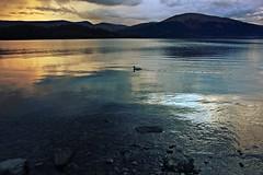 Loch Lomond (anna steppenwolf) Tags: lake water landscape scotland lochlomond