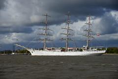 Dar Modziey (larry_antwerp) Tags: port sailing ship belgium belgi vessel antwerp schelde darmodziey  antwerpen  schip   darmlodziezy                          7821075