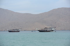 24 hours in Oman (My Return Ticket) Tags: oman dhow musandam dibba wwwmyreturnticketorg