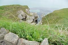 Cliff Coastal Walk (Lisa_Jardine) Tags: county northernireland portrush countyantrim antrim causewaycoast eaststrand eaststrandportrush northcoastofireland