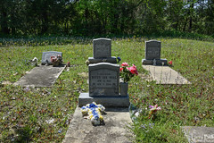 DSC_0279.jpg (SouthernPhotos@outlook.com) Tags: cemetery us unitedstates alabama sumtercounty larrybell browncemetery emelle larebel larebell