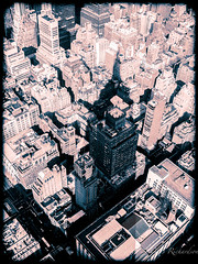 In the shadow of greatness (Sasquatchpics) Tags: usa newyork places empirestate splittone