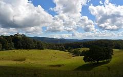 'Echo Valley' (dustaway) Tags: landscape view cattle plateau australia queensland vista australianlandscape gully paddocks echovalley sequeensland springbrookplateau ficusobliqua