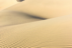 20160226_DV_trip_016 (petamini_pix) Tags: california morning abstract sand desert dune deathvalley highkey rippled sanddune mesquitedunes