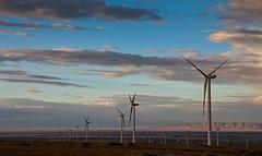 7 (Fibi's) Tags: energy wind xinjiang kanas windpower 2013 burqin tuannguyen tancuong fibiphoto nguyenngoctuan fibitravel
