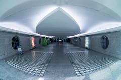 Symmetries (andresenra) Tags: architecture buildings airport francisco sony airplanes fisheye porto sa zenitar carneiro