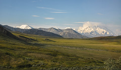 Denali (barfi*) Tags: alaska landscape outdoor denali denalinp