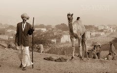 Pushkar-03295-20151121-PE7C1973-Edit (Swaranjeet) Tags: november portrait horses people india colour portraits canon eos is indian traditional full moustache camel frame indie colourful turban tradition fullframe dslr ethnic pushkar 70200 f28 ef rajasthan mela sjs rajasthani 2015 camelfair hindustan animalfair marwari swaran sjsphotography 5dmkiii canonef70200f28lisiiusm swaranjeet eos5dmkiii canoneos5dmkiii swaranjeetsingh swaranjeetphotography sjsvision bharatvarsh