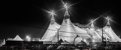as the lights begin to fade (pbo31) Tags: show sanfrancisco california horses urban blackandwhite panorama white black silhouette northerncalifornia night dark nikon january large panoramic tent bayarea traveling stitched missionbay 2016 boury pbo31 d810 odysseo