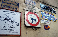Fez Medina Signs (NYC Comets) Tags: africa travel morocco fez maroc fes feselbali