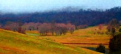 Landscape (pjpink) Tags: winter painterly field landscape virginia colorful january charlottesville pastoral hss 2016 pjpink