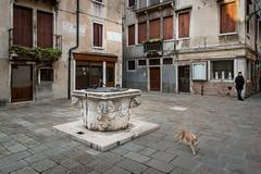 Parrochia S. Maria del Rosario (RobMenting) Tags: travel europe venezia itali veneti