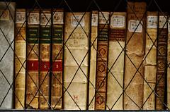 Quadrivium (S. Hemiolia) Tags: library books libri biblioteca bologna archiginnasio legatura pergamena libriantichi legature