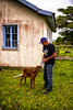 (Miriam Cardoso de Souza) Tags: photo fotografia mamada mamadeira agricultor terneiro