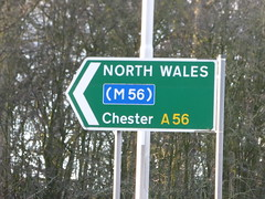 Chester Road, Daresbury - sign on the A56 - to North Wales (M56) and Chester (ell brown) Tags: greatbritain trees england tree sign village cheshire unitedkingdom chester northwales daresbury halton m56 a56 chesterrd daresburyvillage daresburyconservationarea chesterrddaresbury