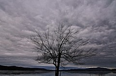 2016_0204Brooding-Sky0001 (maineman152 (Lou)) Tags: cloud storm nature rain clouds dark landscape maine stormy rainstorm brooding february cloudysky naturephotography landscapephotography naturephoto provincelake darkskys landscapephoto