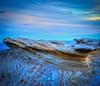 Eroded Sandstone (Shihab Imam) Tags: sandstone australia cronulla kurnell rocksculpture sydneynsw sutherlandshire claystone potterpoint