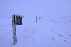 Foggy fence line (Len Langevin) Tags: winter snow canada fog fence vanishingpoint nikon frost foggy frosty tokina alberta highkey disappear hff 1116 d300s