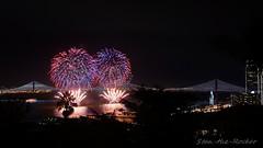 View from Coit Tower - Bay Lights Re-Lighting and Super Bowl City Fireworks Show - 013016 - 10 (Stan-the-Rocker) Tags: sanfrancisco sony coittower northbeach embarcadero ferrybuilding telegraphhill nex sanfranciscooaklandbaybridge sfobb sb50 baylights sel1855 stantherocker