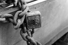 Lakitelek, tserd (rozsaphotography) Tags: boat nikon hungary kit mm 18 55 vr magyarorszg lakitelek tserd d3300