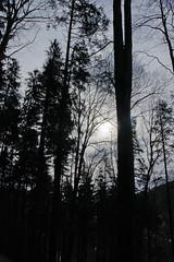 Ustron (Stimoroll) Tags: trees mountains forest poland hills atumn silesia slask beskidy ustron beskid besid cityofpoland