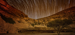 Stargazing (Wajahat Mahmood) Tags: longexposure night stars desert riyadh saudiarabia startrails stargazing huraiymila