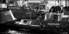 3 of each (Maike B) Tags: blackandwhite work harbour hamburg hafen arbeit tugboats schlepper schwarzweis bugsier