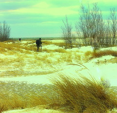 Winter Observations On The Beach (rosearodoe) Tags: winter snow beach water season living midwest michigan dunes shoreline photographers fresh lakemichigan beachfront resource muskegon icecold dunegrass oberservation midwestliving puremichigan thefouthcoast lakeshoreliving