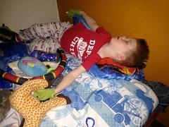 20160126_Shannon_phone_0068.jpg (Ryan and Shannon Gutenkunst) Tags: sleeping usa bed tucson snake az stuffedanimals bedtime giraffe waterbottle mittens carsongutenkunst