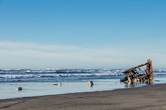 2016-01-10 - Peter Iredale Shipwreck-64 (www.bazpics.com) Tags: ocean sea usa beach water oregon america skeleton sand ship pacific or wave peter shipwreck frame hull wreck iredale