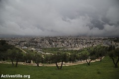 East Jerusalem, 22.2.2016 (activestills) Tags: landscape jerusalem dailylife olivetree occupation eastjerusalem orenziv wadialjoz topimages sheikhjarrah