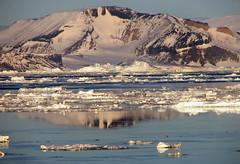 sunrise Weddell sea (48) (Russell Scott Images) Tags: pink snow ice sunrise antarctica mauve brash weddellsea