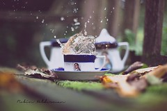 Napoleons tea (Pamba-) Tags: autumn hot fall cup coffee beautiful dof tea beverage drop delicious napoleon droplet splash