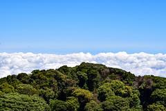 Barva Volcano (cataava) Tags: green nature clouds forest volcano nationalpark nikon costarica barva
