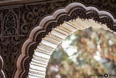 Alhambra (Perluti) Tags: light españa primavera luz architecture spring andalucía spain arquitectura nikon flickr sigma alhambra granada 1020mm 10mm palaciosnazaríes nazarí d3000 perluti mikelaguirre