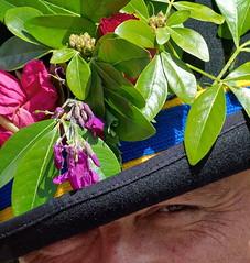 Folk Weekend Oxford (Mike Peckett Images) Tags: oxford pittriversmuseum mikepeckett folkweekendoxford