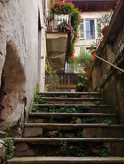 up the steps (SM Tham) Tags: flowers houses homes windows italy plants buildings outdoors town weeds gate steps shutters balconies walls residences lakeorta italianlakes planterboxes ortasangiulio