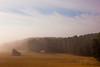 l_IMG_6908_MartenSvensson (Bad-Duck) Tags: höst landskap halm dimma ryd stubb stämning årstid höst2015