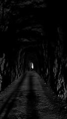 Galleria di pietra. Foz De Lumbier (Guly_Julien) Tags: espaa parco bird animal stone de spain gallery natural path arcade trail prey sentiero pietra galleria foz spagna birdofprey reserva gola navarra predatory gole naturale riserva predatore lumbier avvoltoio