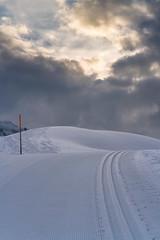 20160324-DSC06275 (Hjk) Tags: schnee winter ski sterreich schrcken warth vorarlberg