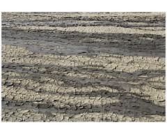 IMG_7385 (Schamsz) Tags: lines ground illusion alat lt activemudvolcano
