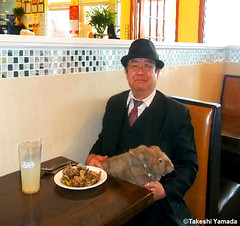 Dr. Takeshi Yamada and Seara (Coney Island Sea Rabbit) at the Seaport Buffet Chinese restaurant in Sheepshead Bay in Brooklyn, NY on May 13, 2015.  20150513 129 131=C2= (searabbits23) Tags: ny newyork sexy celebrity rabbit art hat fashion animal brooklyn sushi asian coneyisland japanese star restaurant tv google king artist dragon god manhattan famous gothic goth uma ufo pop taxidermy vogue cnn tuxedo bikini tophat unitednations playboy entertainer oddities genius mermaid amc mardigras salvadordali performer unicorn billclinton seamonster billgates aol vangogh curiosities sideshow jeffkoons globalwarming mart magician takashimurakami pablopicasso steampunk damienhirst cryptozoology freakshow seara immortalized takeshiyamada roguetaxidermy searabbit barrackobama ladygaga climategate  manwithrabbit