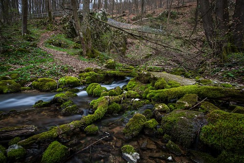 Long exposure spring at Slovak Karst National Park.